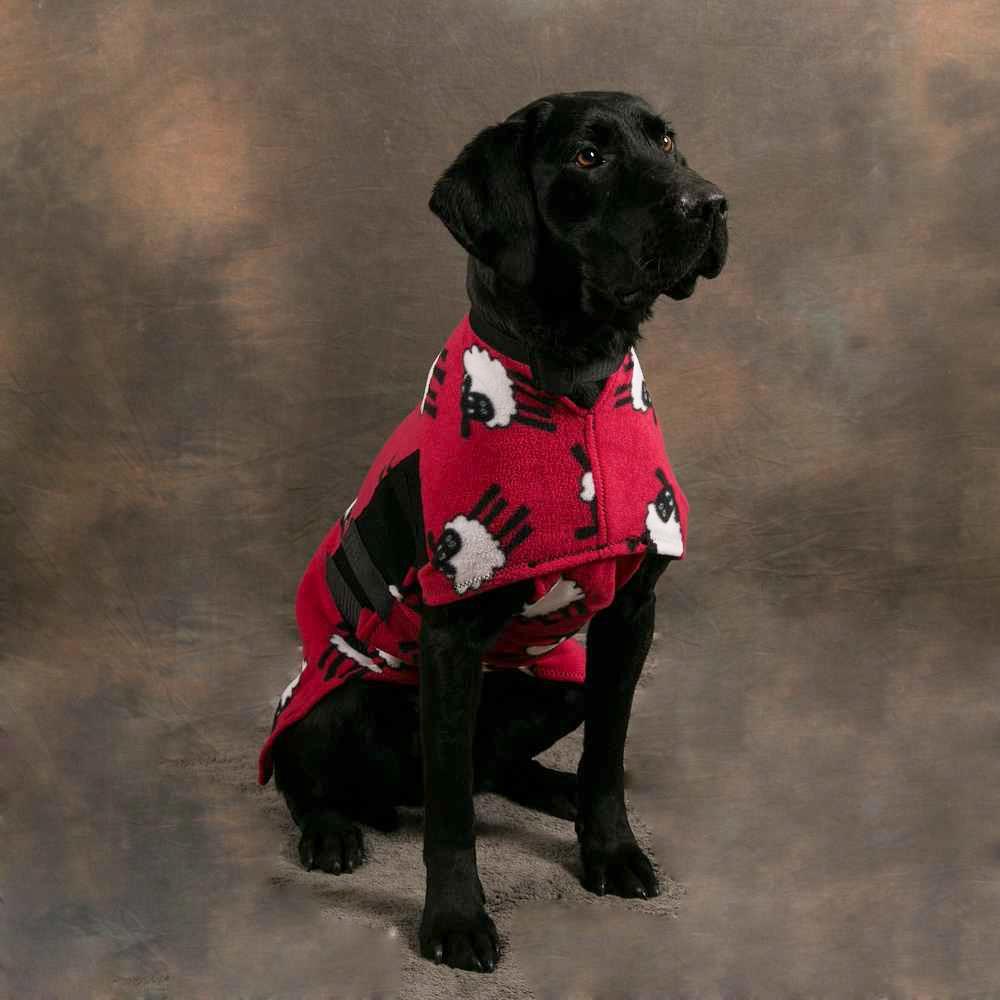 Great Dane Dog Coats Uk